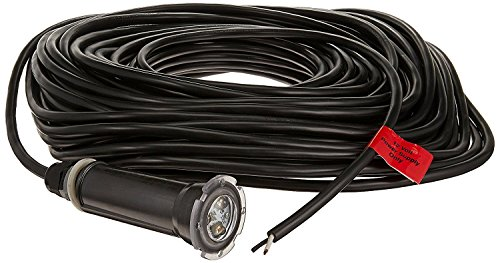 Pentair 602055 GloBrite LED 12V Pool Light - 100' Cord by Pentair