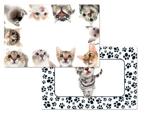 Your Kitten Theme Placemats Prints