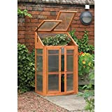 Kingfisher Wooden Mini Greenhouse, Pretreated Hardwood, Outdoor Garden