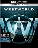 Westworld: The Complete First Season (4K UHD/ BD/ UV/ BIL) [Blu-ray]