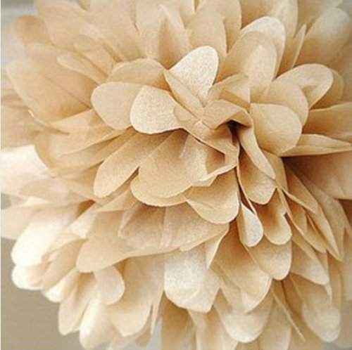 10pcs Khaki Tissue Hanging Paper Pom-poms, Hmxpls Flower Ball Wedding Party Outdoor Decoration Premium Tissue Paper Pom Pom Flowers Craft Kit Cream White (Outdoor Paper)