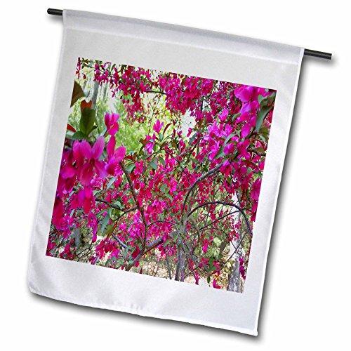 Spring Glorious (3dRose TDSwhite – Spring Seasonal Nature Photos - Springtime Glorious Flowering Tree - 12 x 18 inch Garden Flag (fl_284370_1))