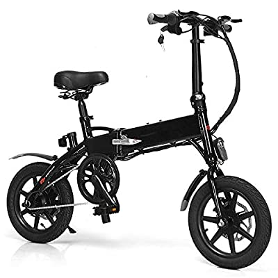 zwan 350 W Portable High Speed Folding Adult Electric Bicycle with Ebook