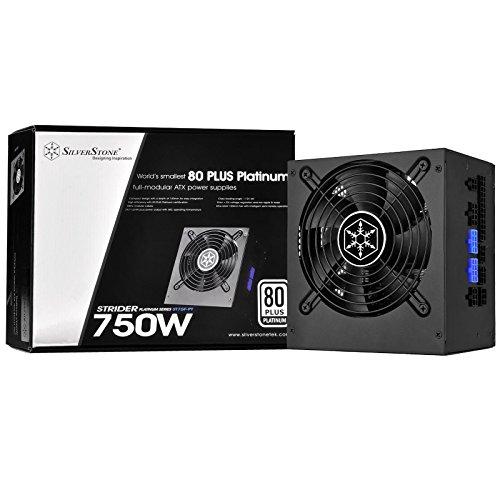 SilverStone Technology 750W 80 Plus Platinum Certified Single +12V Rail ATX Power Supply, PS-ST75F-PT