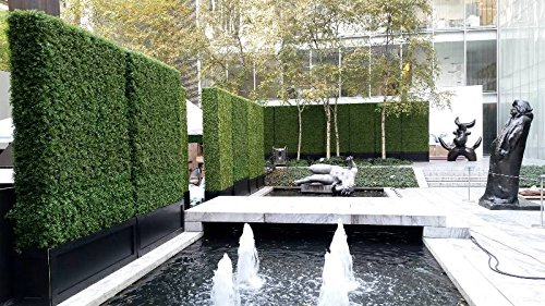 Artificial Boxwood Hedge, privacy hedge screen, UV Protected Faux Greenery Mats, boxwood wall, Suitable for Both Outdoor or Indoor, Garden, Backyard and Home Décor,20 x 20 Inch (12 piece) by Generic (Image #5)