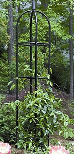 Tall Black Garden Obelisk. This Round Metal Trellis is a Nice Outdoor Fixture for Climbing Vines and Plants. (Obelisk Garden Metal)