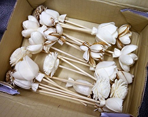20 Balsa Wood Sola Diffuser Flowers with 5in. Rattan Reeds, mix of Jasmine, Lotus, Rose, Mini Rose, Opium Poppy by Zap (Image #5)