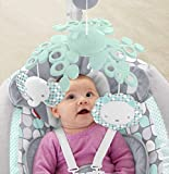 Fisher-Price Sweet Dreams Cradle 'n Swing