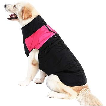 mama stadt Ropa para Mascotas Perros Invierno Chaleco Caliente Algodón Abrigo Chaqueta Impermeable Perro Pequeño Mediano Ropa de Nieve Tamaño XS-5XL: ...