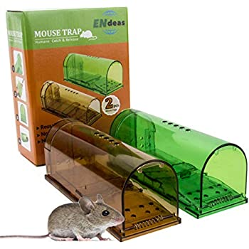 92ddd5bee50 Upgraded No Kill Humane Mouse Trap for Indoor/Outdoor. Safe for Kids,  People and Pet. Catch and Release. Catcher That Works for Small Rodents.