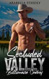 Bargain eBook - Secluded Valley