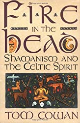Fire in the Head: Shamanism And The Celtic Spirit