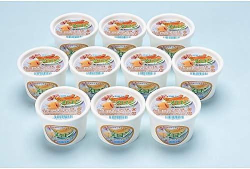 ( 産地直送 お取り寄せグルメ ) 北海道 函館牛乳 クリーミーなメロンシャーベット 10個セット