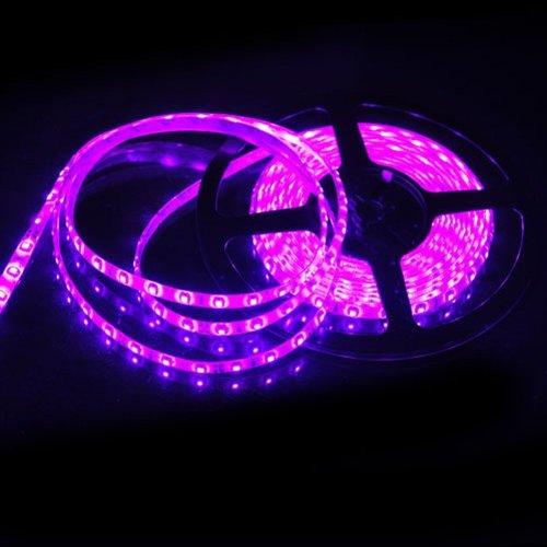 Purple Led Tape Lighting - 4