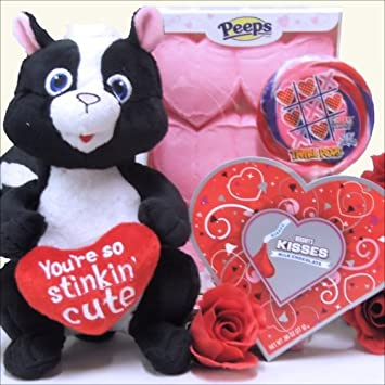 Amazon Com Stinkin Cute Valentine S Day Gift Basket For Kids