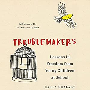 Troublemakers Audiobook