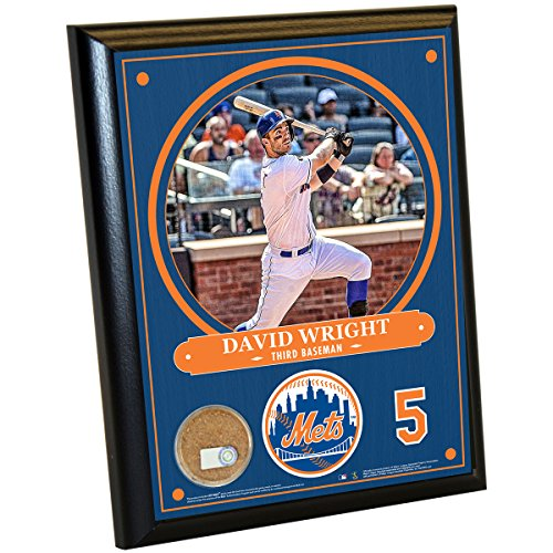 """MLB New York Mets David Wright Plaque with Game Used Dirt from Citi Field, 8"""" x 10"""", Navy"""