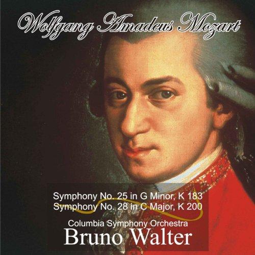 Symphony No. 25 in G Minor, K ...