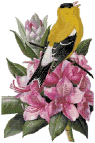 Washington State Bird (American Goldfinch) and Flower (Coast Rhododendron) Counted Cross Stitch Pattern