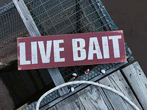 CELYCASY Live Bait Sign, Man Cave Decor, Fishing Hut Decor, Lake Life Art, Cabin Wall Art, Bait Shop Sign, Fathers Day, Rustic Wood Sign