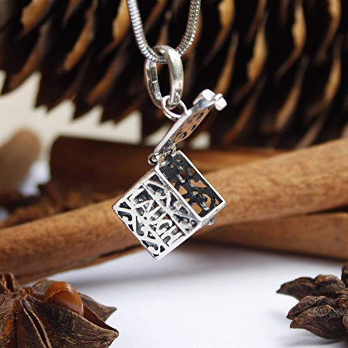 Box Parfum Miniature - 925 Sterling Silver Essential Oil Diffuser Necklace Aroma Box Locket Pendant Aromatherapy Jewelry