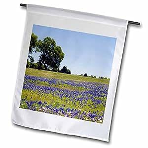 Danita Delimont - Texas - Bluebonnet and Evening Primrose wildflowers, TX - US44 DFR0238 - David R. Frazier - 12 x 18 inch Garden Flag (fl_94435_1)
