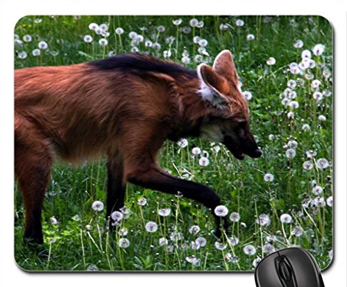 maned wolf Mouse Pad, Mousepad - Buy Online in Oman