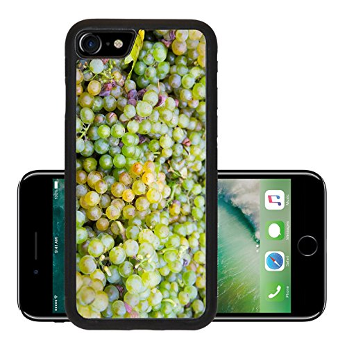 e iPhone 7 Aluminum Backplate Bumper Snap Case iPhone7 IMAGE ID: 24225312 Mature fresh grapes from the harvest (Pinot Blanc Grapes)