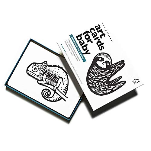 Wee Gallery, Art Cards for Baby, Black and White Baby Cards, 0-12 Months - Rainforest Collection