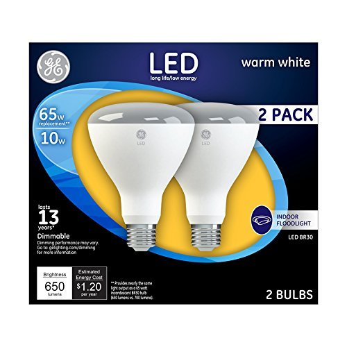Flood Light Bulb Disposal in US - 9