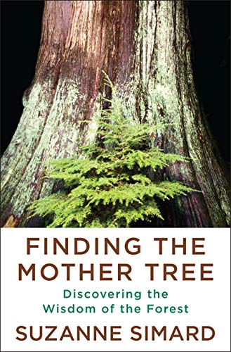 Book Cover: Finding the Mother Tree: Discovering the Wisdom of the Forest
