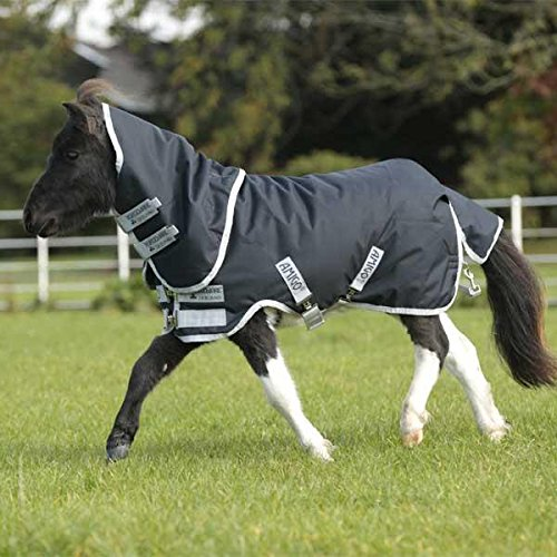 Horseware Amigo Hero 6 Petite Plus Turnout 200g 45 by Horseware Ireland