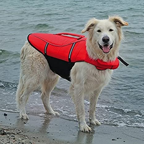 Trixie Chaleco Salvavidas para Perros, L, 54 cm, Rojo/Ng: Amazon.es: Productos para mascotas