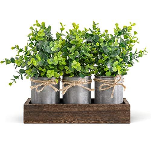 Dahey Decorative Galvanized Metal Pots Centerpiece Decor Wood Tray with Artificial Eucalyptus, 3 Buckets Rustic…