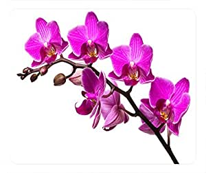 Top Chinese Flowers Design Rectangular Mouse Pad Purple Orchid