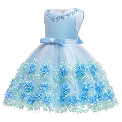 IBTOM CASTLE Baby Girls Flower Lace Tulle Dresses Christening Gowns Newborn Baptism Embroidered Princess 1st Birthday Dress Dusty Blue 12-18 Months ()