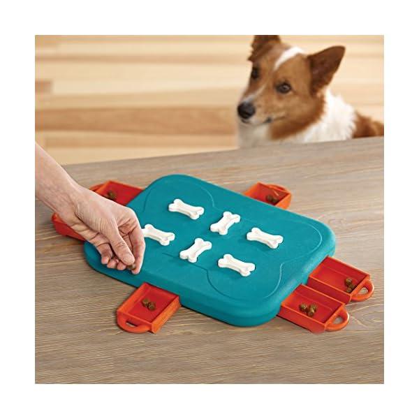 Outward Hound Nina Ottosson Dog Casino Dog Puzzle Toy Dog Game 6