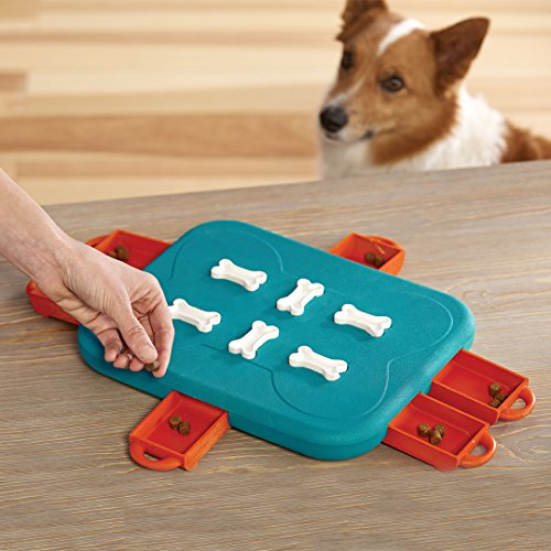 Outward Hound Nina Ottosson Dog Casino Dog Puzzle Toy Dog Game