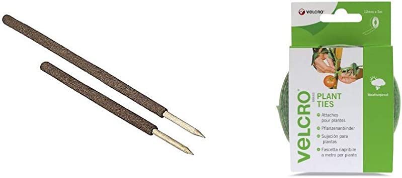 Verdemax 6601 32 mm x 60 cm Moss-Covered Support Stake