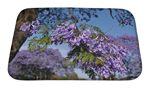 Gear New Bath Rug Mat No Slip Skid Microfiber Soft Plush Absorbent Memory Foam, Jacaranda Blossom In Spring, 24x17