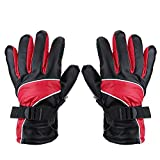 Keenso Motorcycle 12V Heated Gloves Outdoor Hunting Ski Racing Winter Warm Gloves Waterproof Windproof Outdoor Sports Protective Gloves(Red)