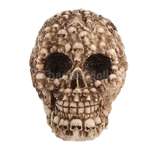 Shalleen Halloween Spooky Life Size 1:1 Resin Human Head Skull Anatomical Model (Girls Superhero Costumes Next Day Delivery)