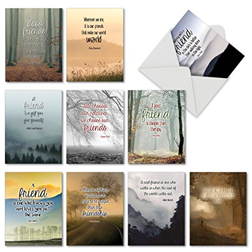 The Best Card Company 10 Assorted 'Friendly Words' Greeting Cards 4 x 5.12 inch - Featuring Quotes About Friendship, Appreciation - 10 Blank Greeting Cards with Envelopes M6618OCBsl ()
