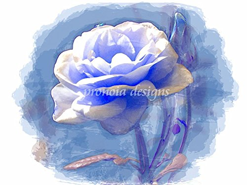 Counted Cross Stitch Pattern: Blue Rose on a Blue Background (Roses, Version 22) ORIGINAL OIL PAINTING (The Magical Flowers ()