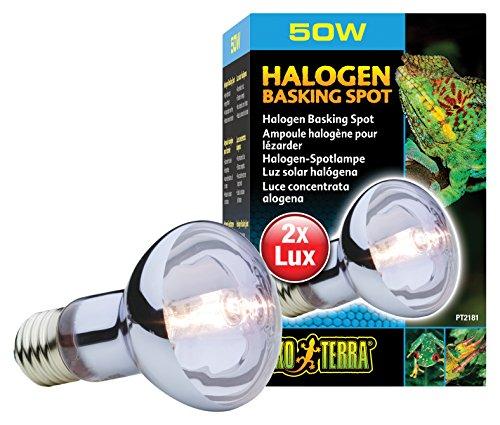 Exo Terra Breeder Basking 4pk--Exo Terra Halogen Basking Spot Lamp 50W by Exo Terra