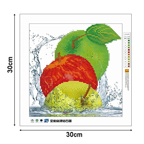 SCASTOE DIY 5D Apple Diamond Embroidery Painting Cross Stitch Craft Home Decor