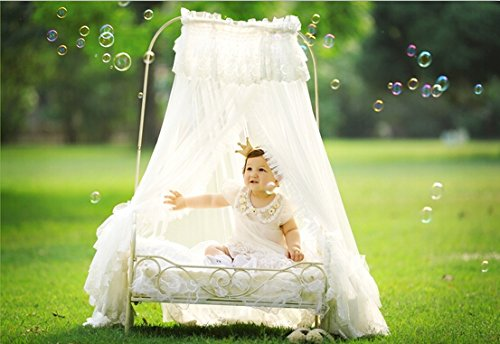Hot! 2016 New Creative Newborn Photography Props infant Photo Props Baby Photography Props Iron Art Bed for Newborn Baby D-78 by backdropday (Image #2)