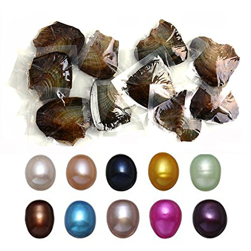 10 PC Freshwater Cultured Pearl Oyster Oval Pearls oysters with pearls inside Ten Colors (7.5-8mm) ()