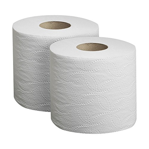 Envision 19880/01 Toilet Paper - 2 rolls