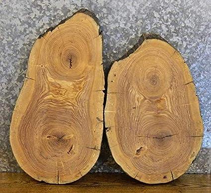 2- Ash Oval Cut Live Edge End/Side Table Top/Centerpiece